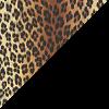 Schwarz-Leopard